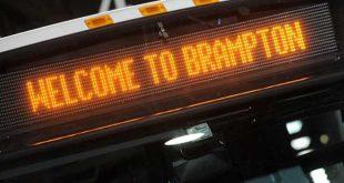 brampton municipal transit fund