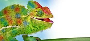 Artificial Chameleon Skin